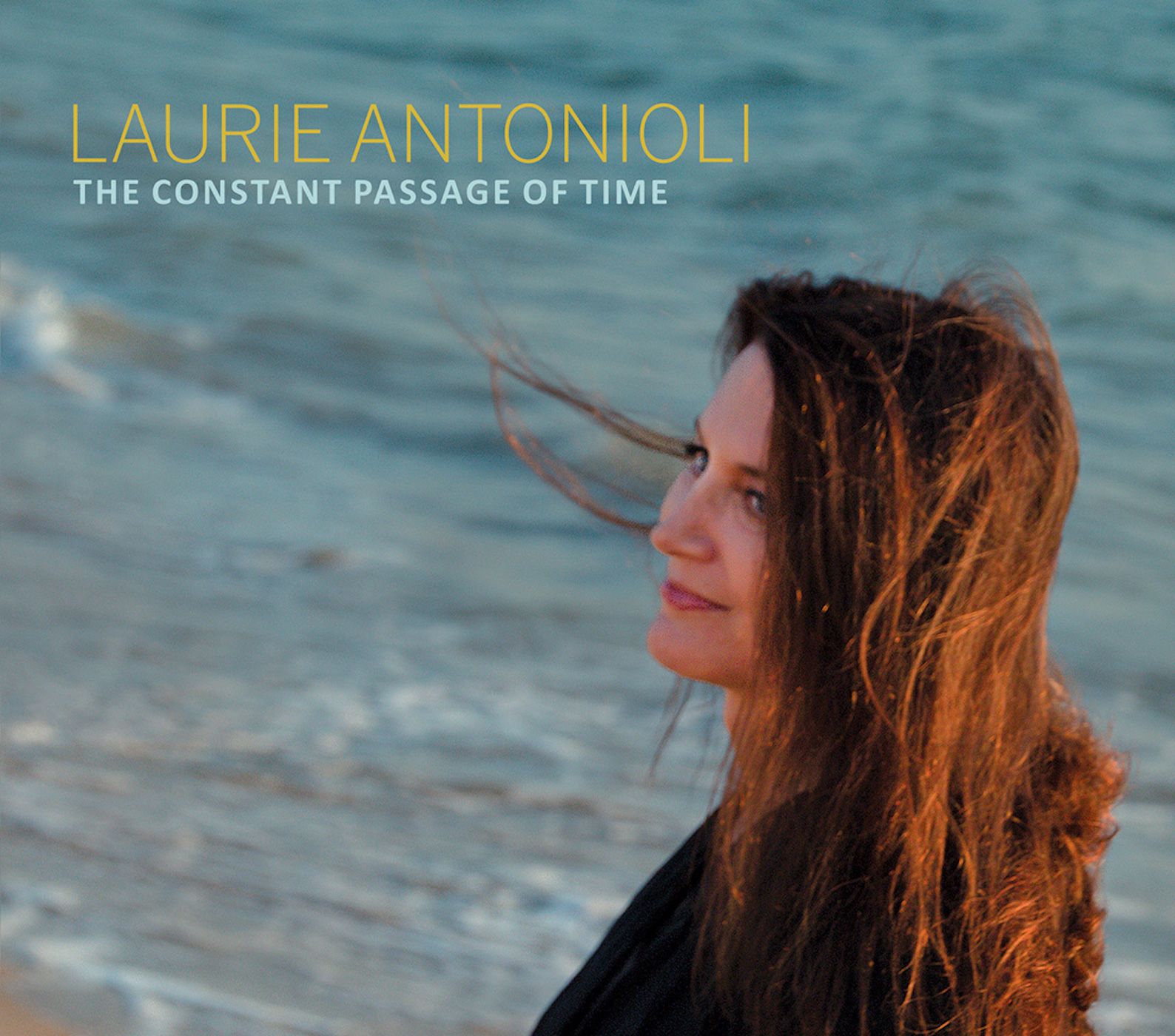 Laurie Antonioli - The Constant Passage of Time